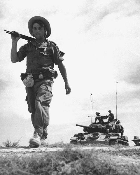 디엔비엔푸 전투에 대한 미국의 대응은?