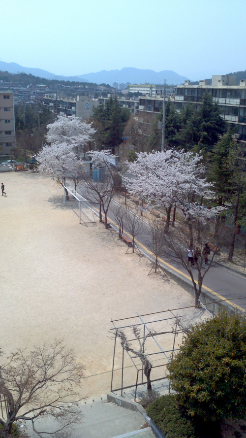 창원 중앙고등학교