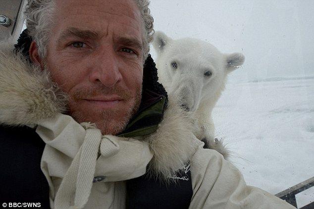 북극곰 괴롭혀서 벌금 300만 원 부과된 사연
