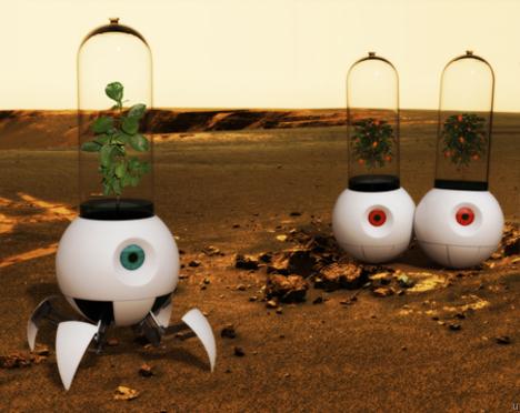 화성에 식물을 키우기 위한 연구들.