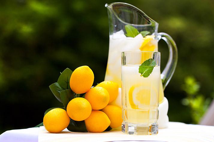 3. 레몬 디톡스의 환상