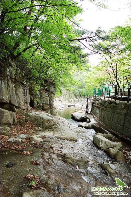 앵무 - 새님들과 함께한 송추 계곡 나들이:-)