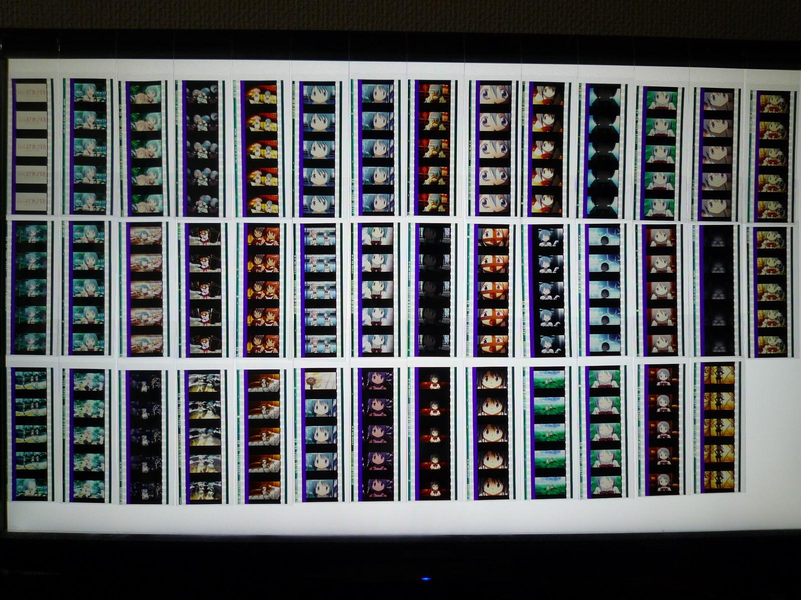 사야카 스레주의 필름 컬렉션이 너무 굉장해…