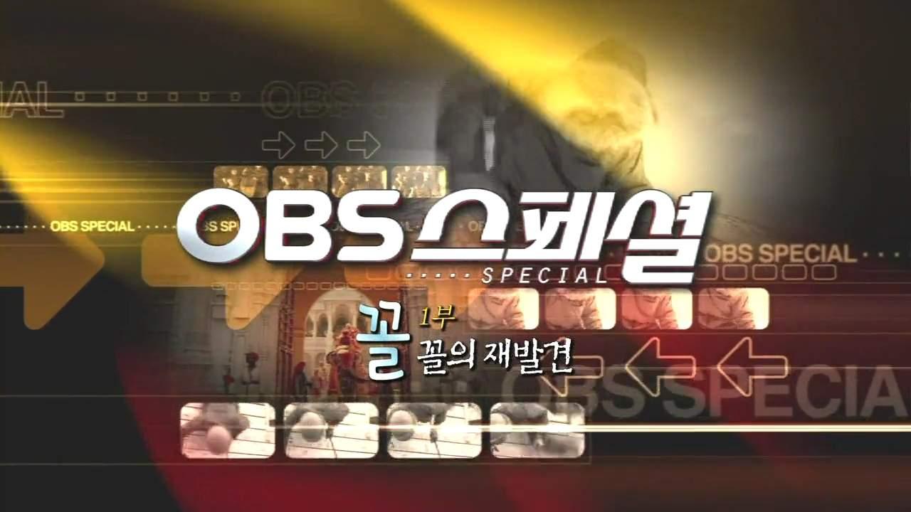 (리뷰) OBS 스페셜 - 꼴 1부 : 꼴의 재발견 (2013041..