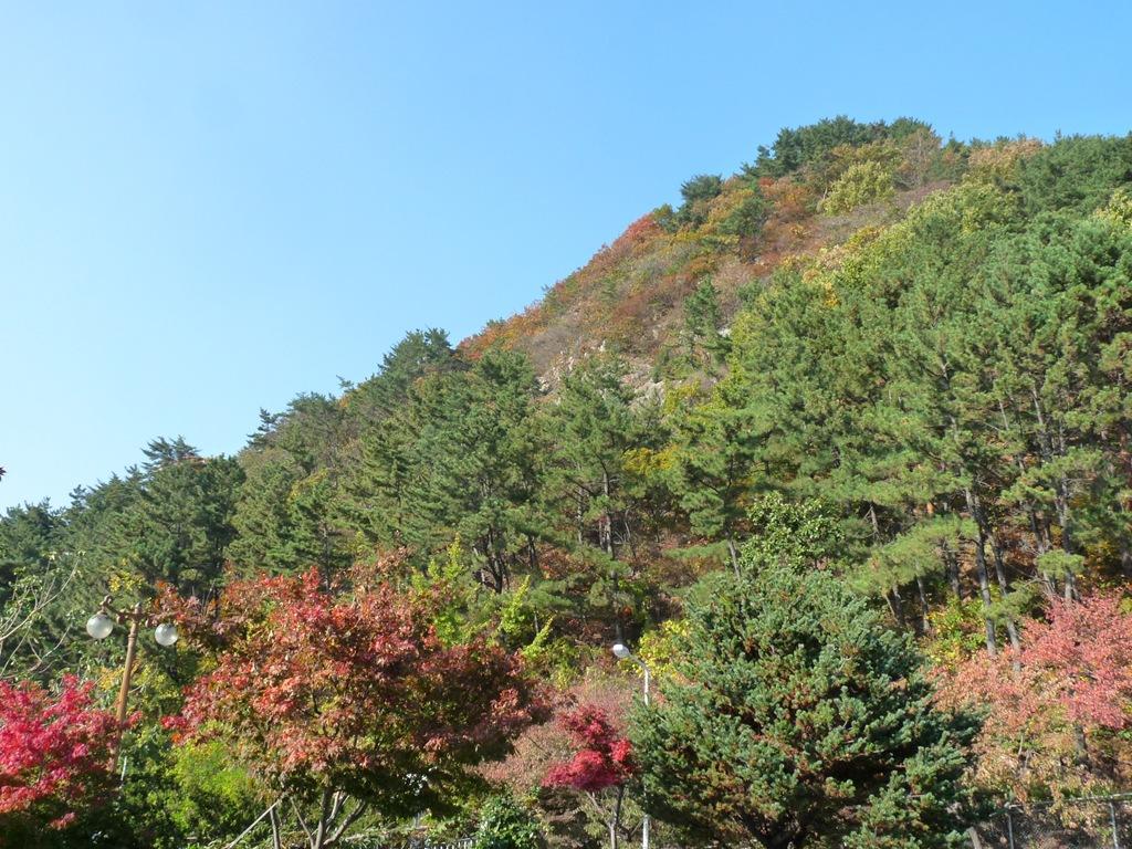 단풍으로 물든 전형적인 가을 정취