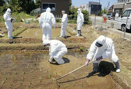 논논비요리 in 후쿠시마