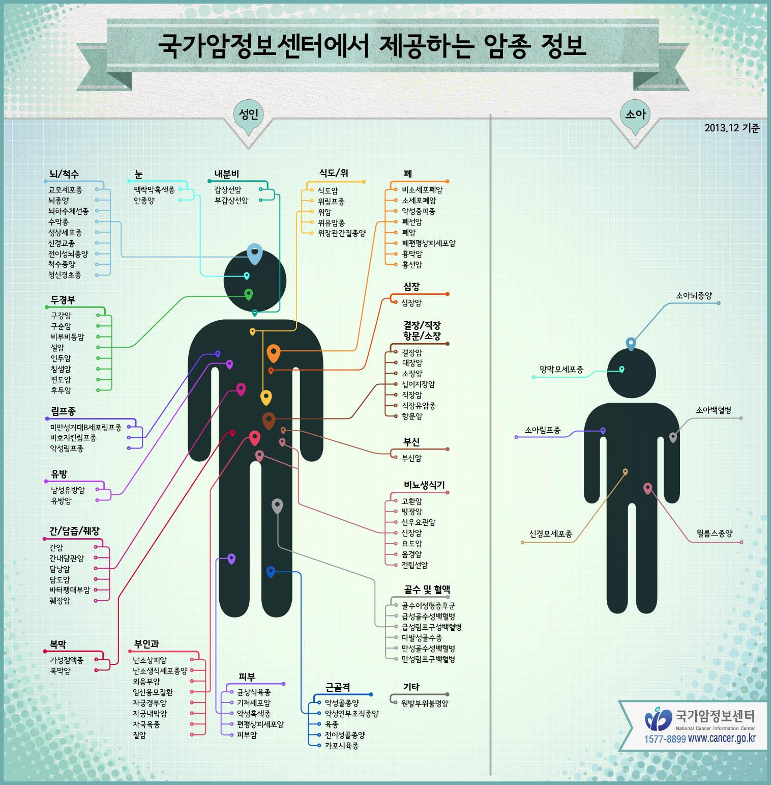 [2013 국가암정보센터 결산] 암종 정보