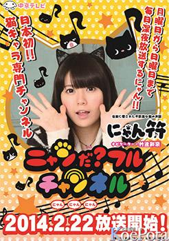일본 최초의 고양이 캐릭터 전문 프로그램, 2월 22일부..