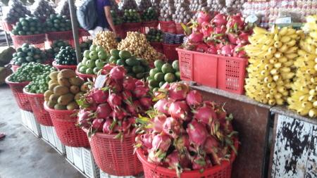 베트남은 열대과일 천국