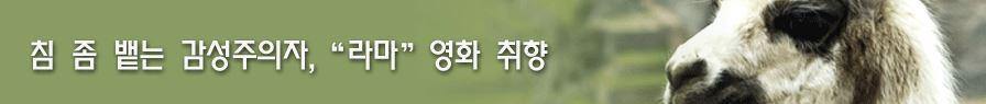 [ID솔루션] 침 좀 뱉는 감성주의 라마?!?? 영화취향..