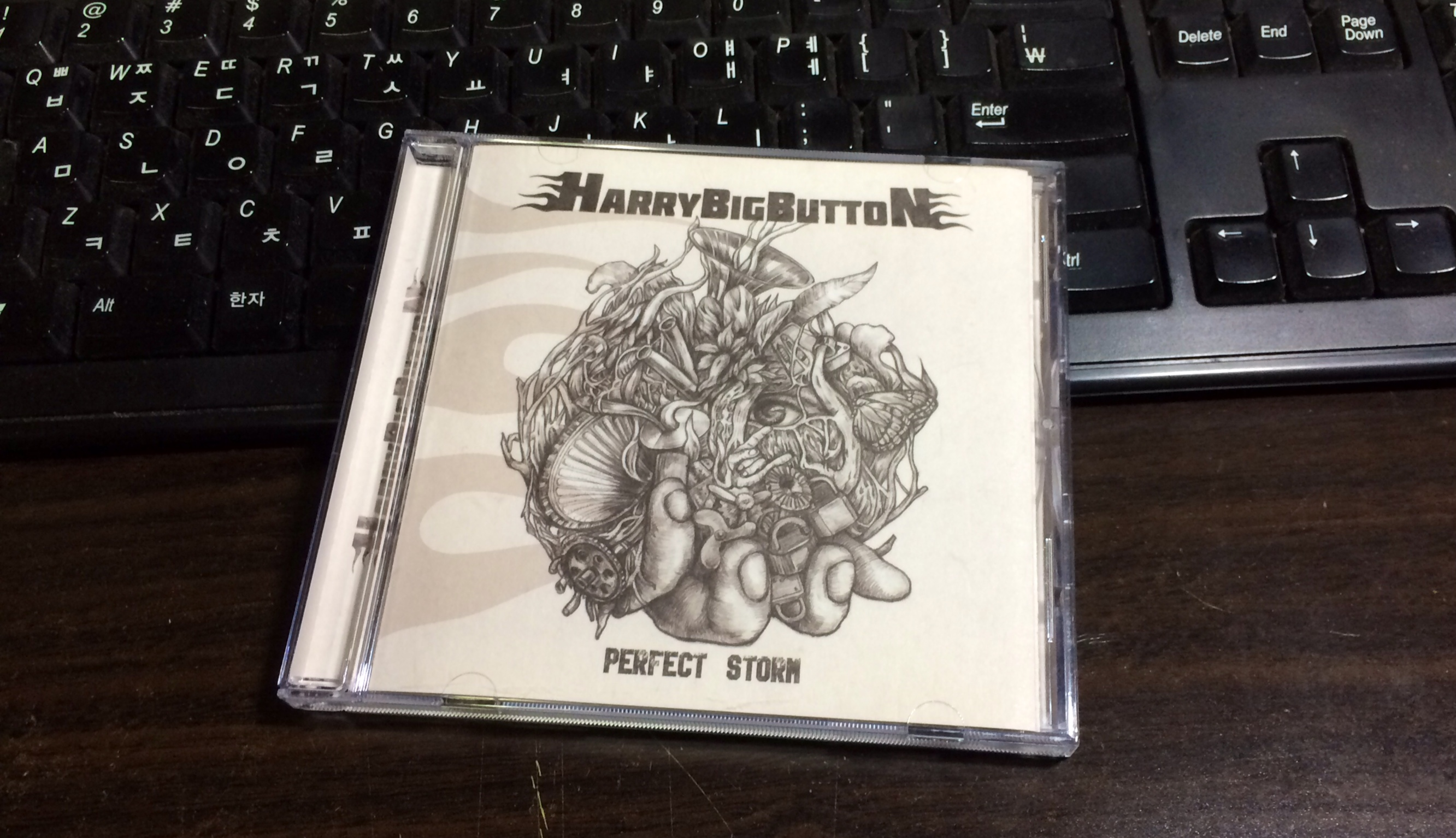 Perfect Storm - Harry Big Button / 2014
