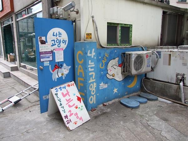 3년만에 '나는 고양이 카페' 서울대입구역점