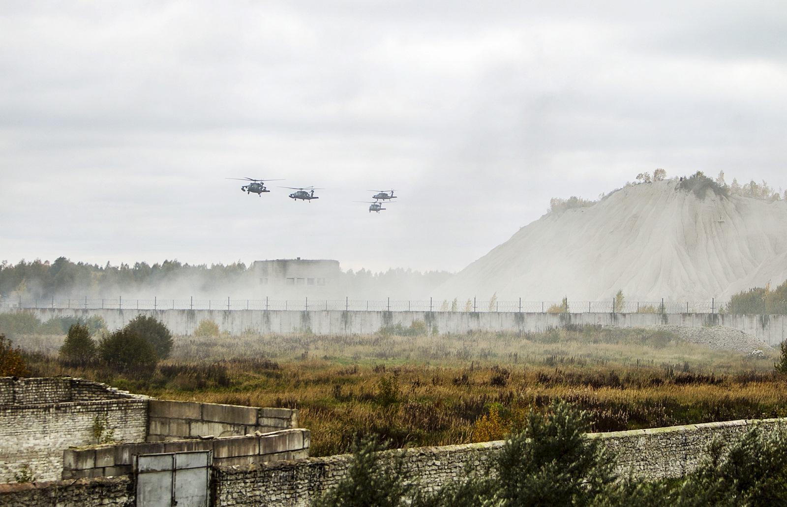 미육군과 Baltic군 합동 포로구출 공중강습훈련 Sil..