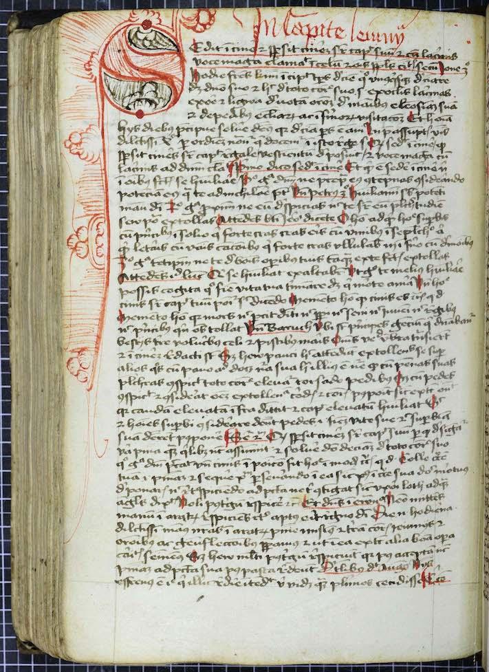 최후 심판의 날에 무엇을 입을 것인가 - 중세 의학