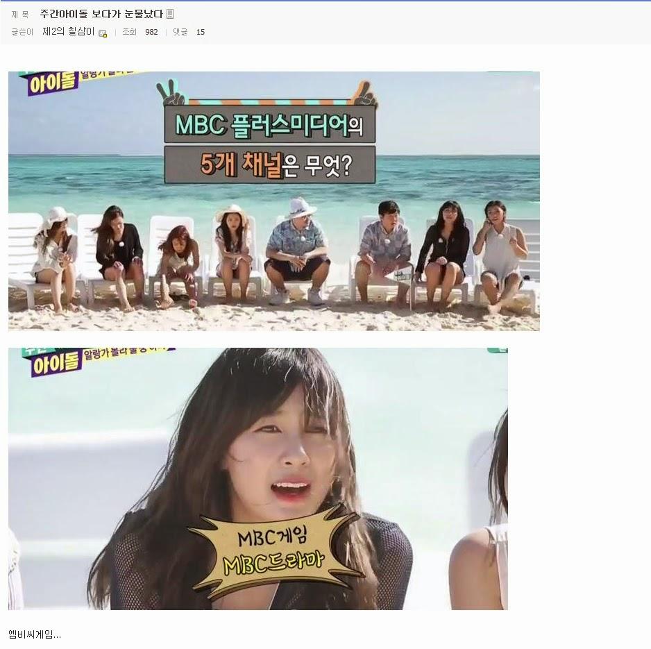 스갤의 아이돌