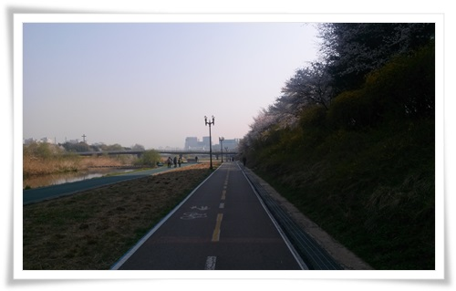 탄천따라 자전거로 29km 출근