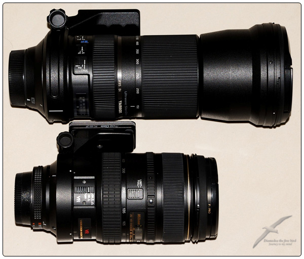 탐론 TAMRON 150-600mm 렌즈를 처음 쓰는 날