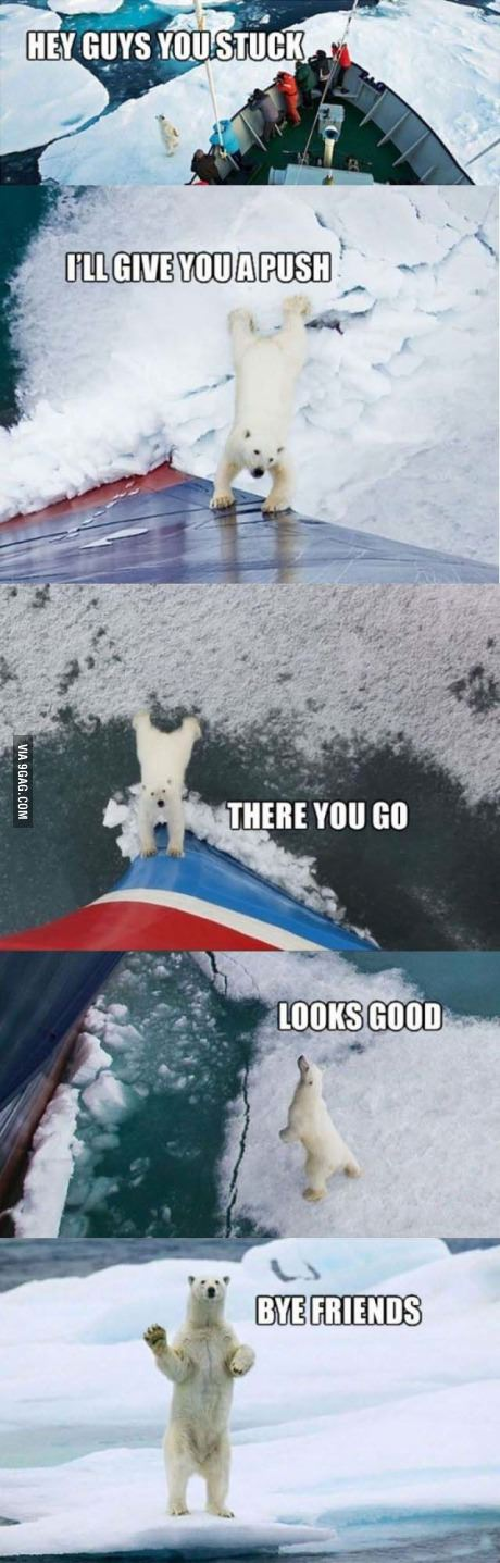 착한 북극곰