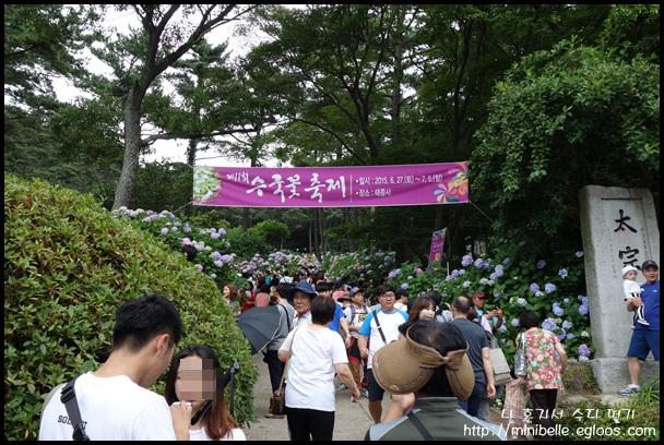 태종사 수국축제