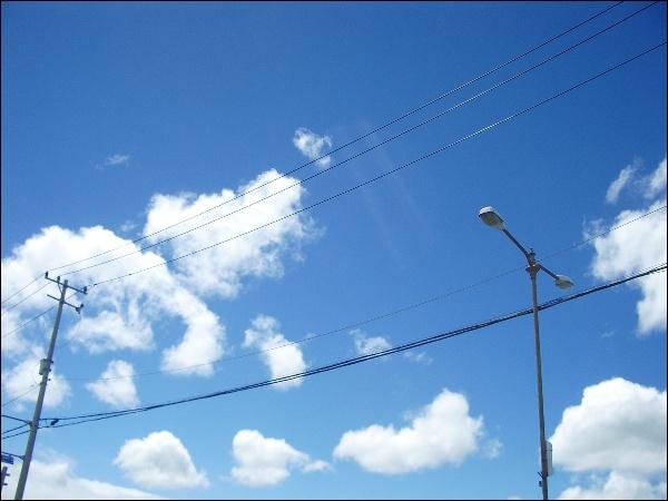 여름 구름