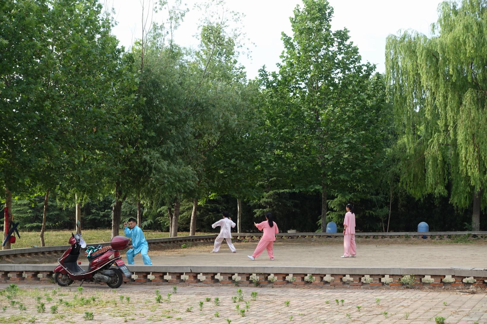 중국 공원에서 太极拳태극권 수련중인 사람들