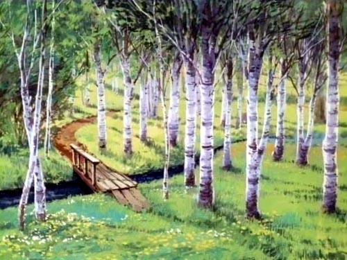 강원도 인제 빨강머리앤의 자작나무숲