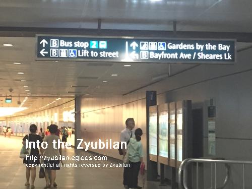 [여행] 20150804 싱가포르 - 가든스 바이 더 베이