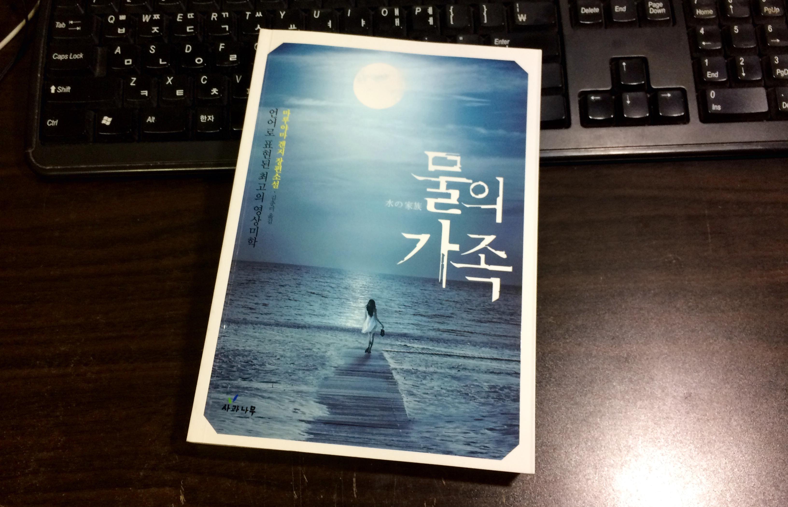 물의 가족 - 마루야마 겐지 / 김춘미 역