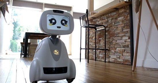 '오픈 소스' 가정용 로봇 버디, 내년 7월 출시