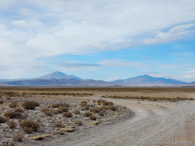 남미여행 (36) 볼리비아 : 알티플라노 고원을 달리다