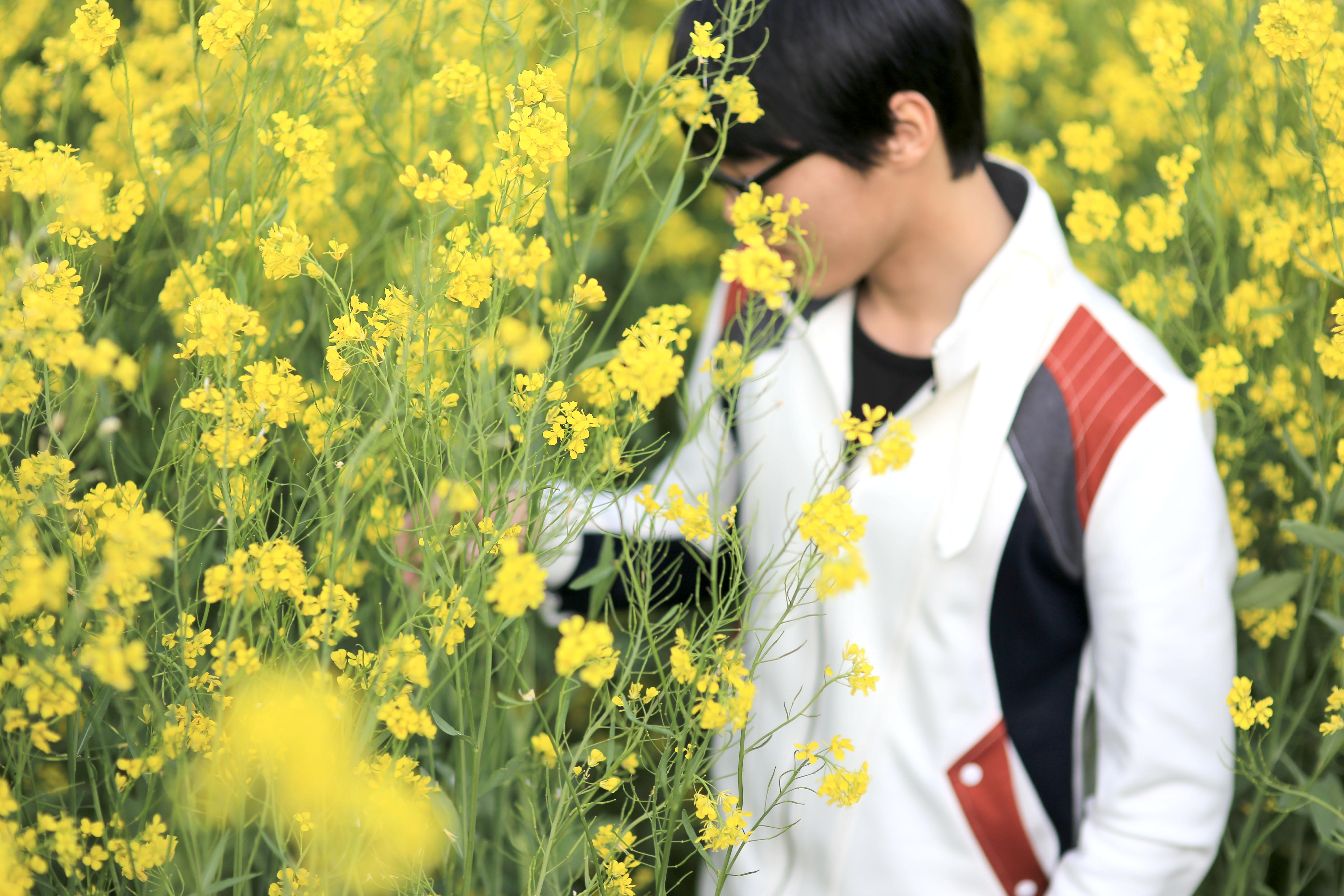 유채꽃밭 소년