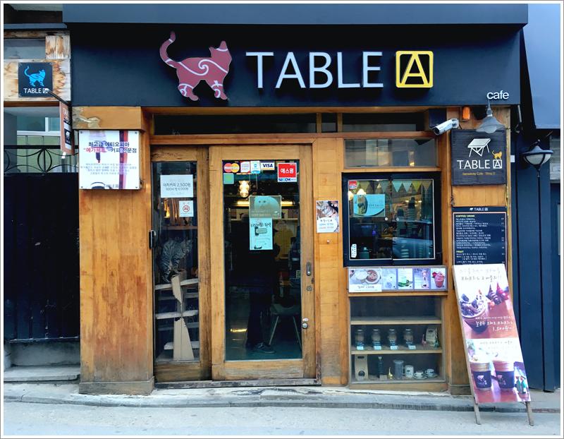 생전 처음 간 고양이 카페 [TABLE A 2호점]