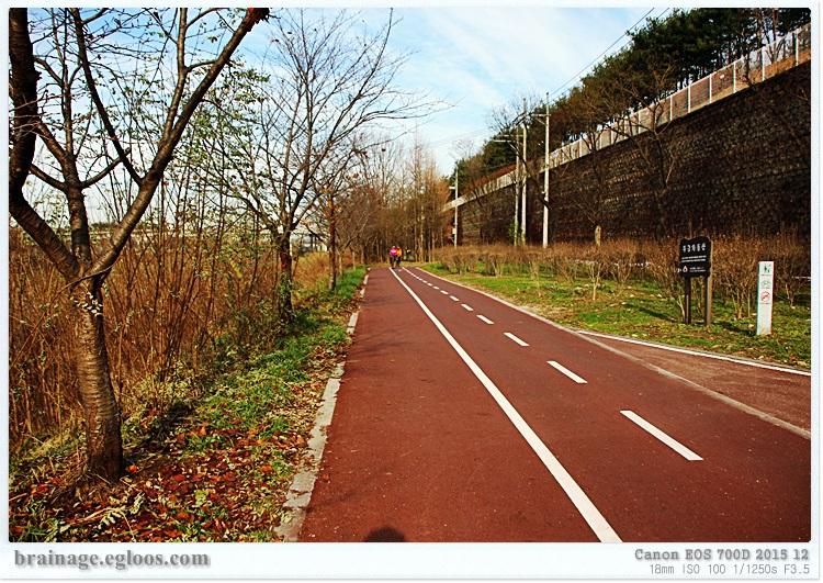 안양루베는 안녕 - 안양시 구간 자전거도로 재포장