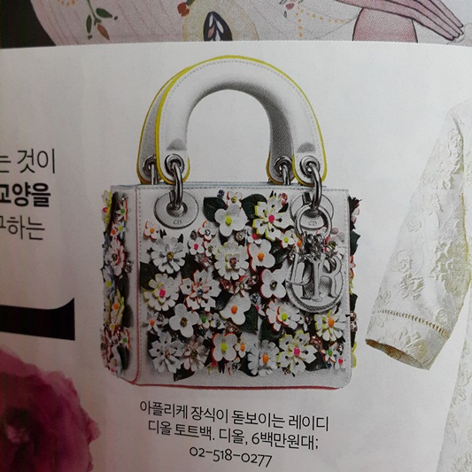 빤짝이 정신산만한 최신유행가방의 패션잡지 잡담