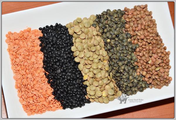 렌즈 콩 렌틸 Lentils 의 종류