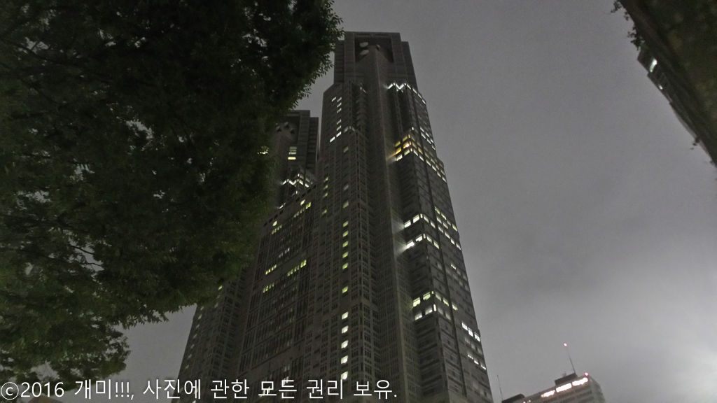 2016. 07. 07. 김백수, 東京을 거닐다 / (5) 김백수..