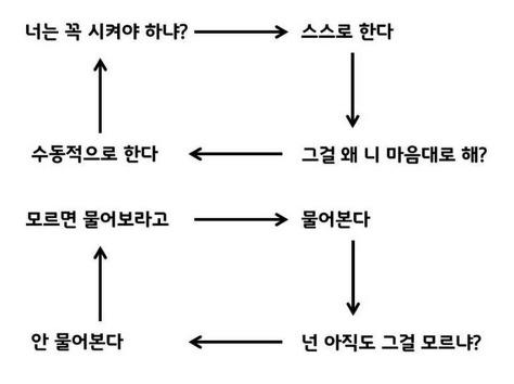 한국의 무한루프