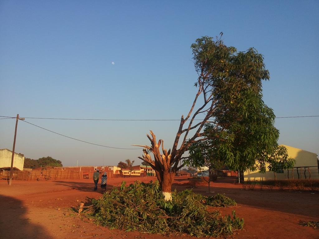 [모잠비크] 마바고 중심가 풍경