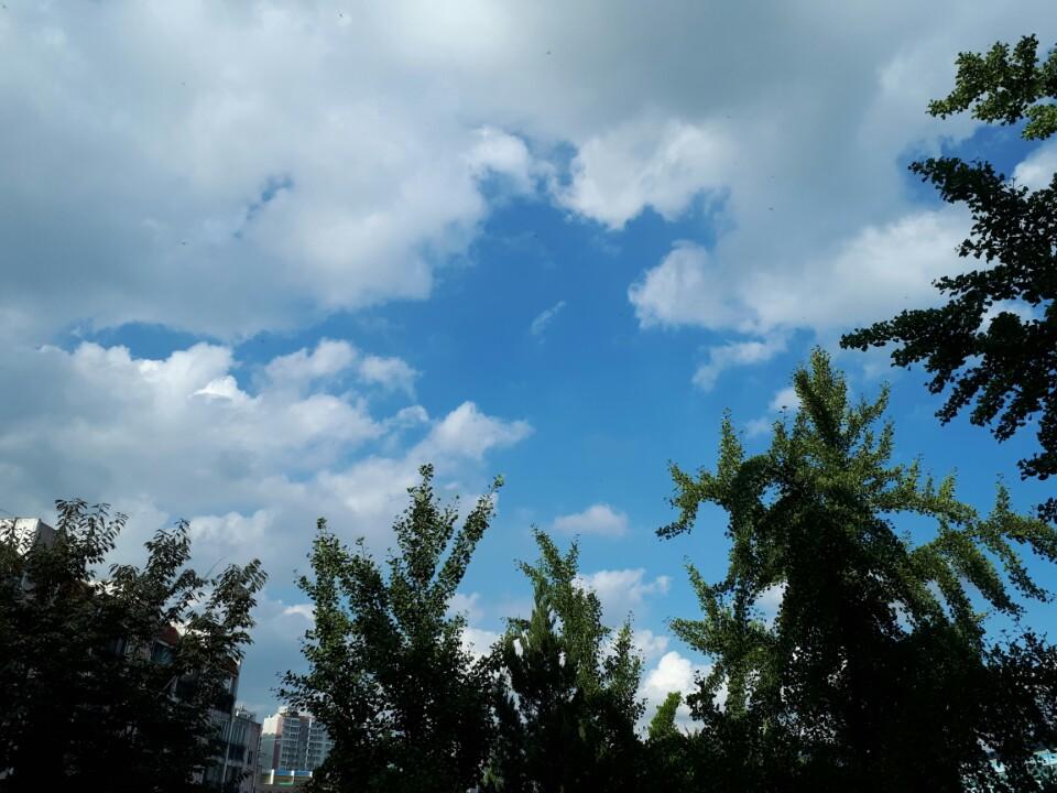 푸른 하늘처럼 깨끗한 마음으로
