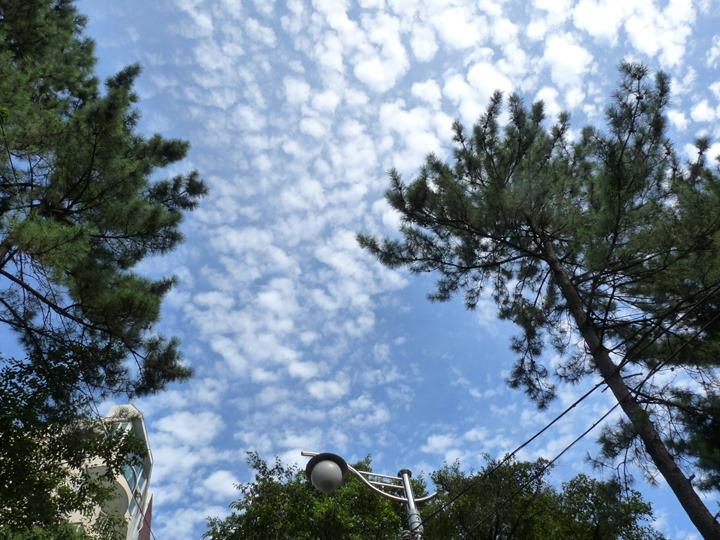 가을이 왔음을 느끼게 하는 하늘의 구름