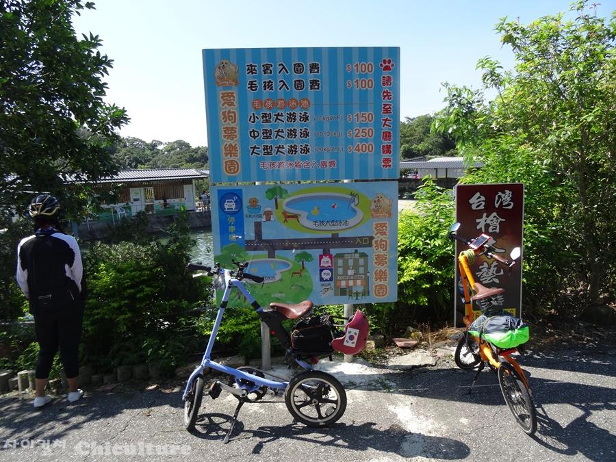 대만의 유료 강아지수영장 모습