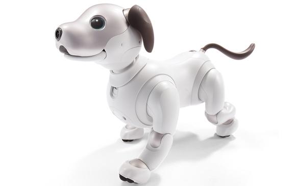 로봇 강아지, 아이보(AIBO 2018)!!