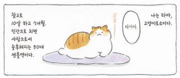 [고양이와 할아버지]