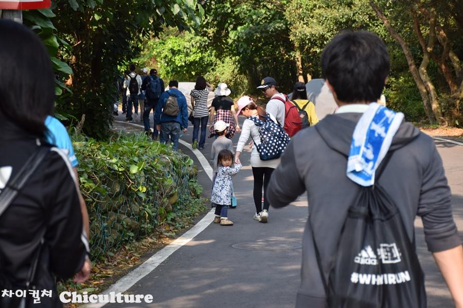 대만의 어느 가족산행 걷기행사 참가한 후기
