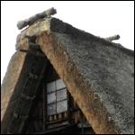 [여행] 일본 여행 2 / 가나자와(金沢)~시라카와..