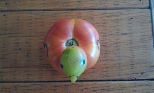 귀여운 토마토!!!