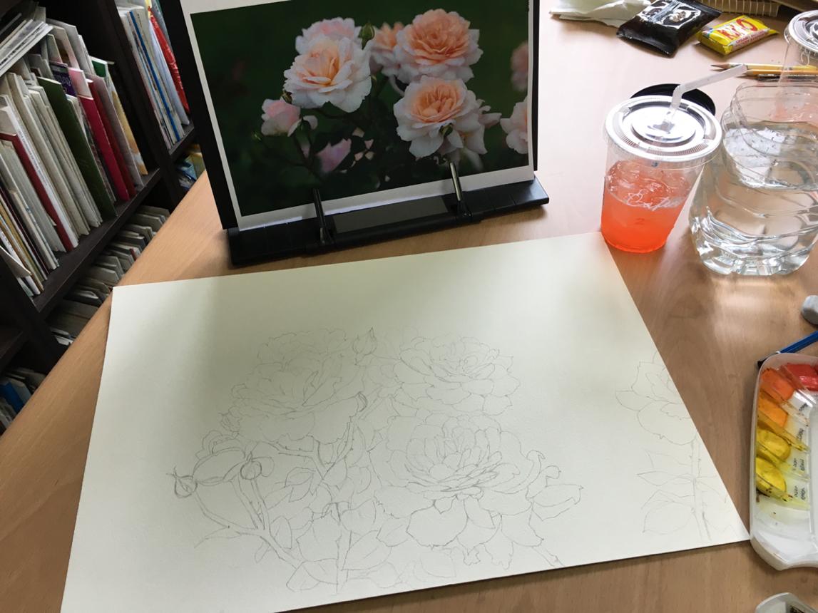 여름 장미 수채