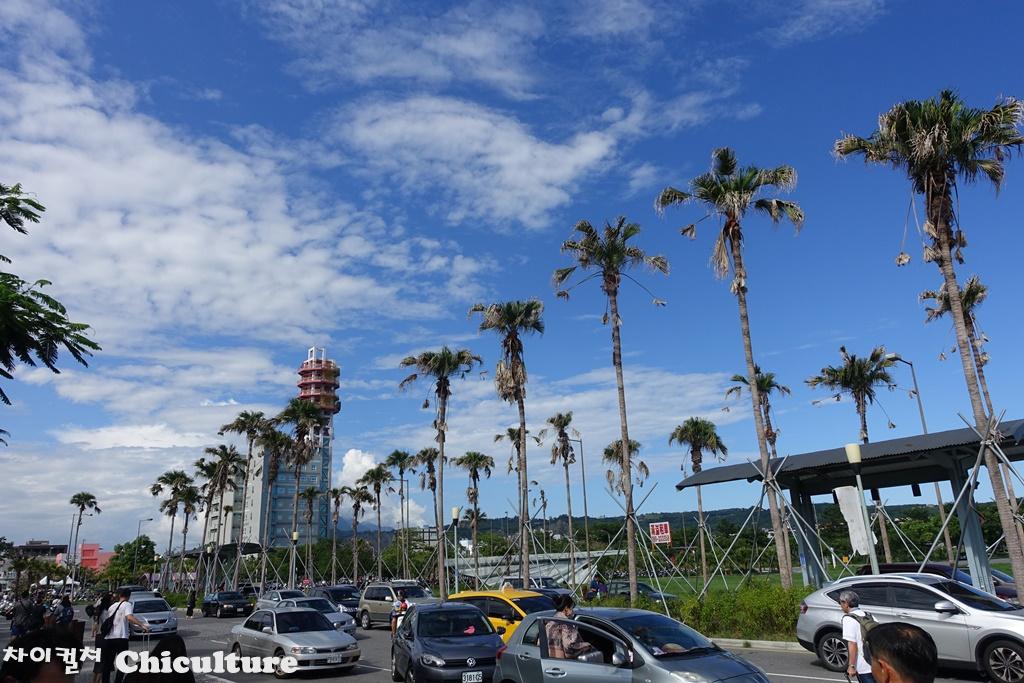 대만타이동台東까지 기차여행
